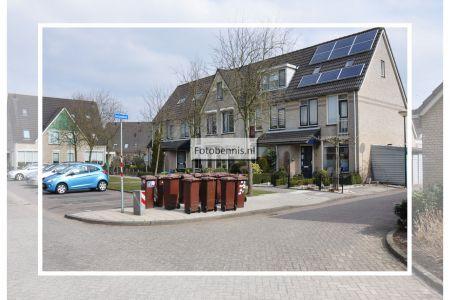 duizendblad 2013.jpg