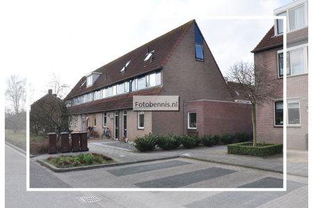 eksterstraat 2013.jpg
