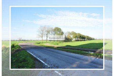 damweg 2014.jpg